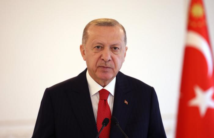 Erdogan sees Turkey's future nowhere else but in Europe