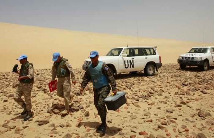 UN Security Council discusses Western Sahara after US diplomatic U turn