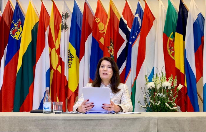 Ann Linde, the Swedish foreign minister, outlines her country's priorities for its 2021 OSCE chairpersonship