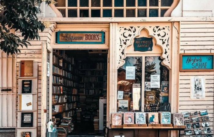 "Istanbul's ""sahaf"" offer books for all seasons"