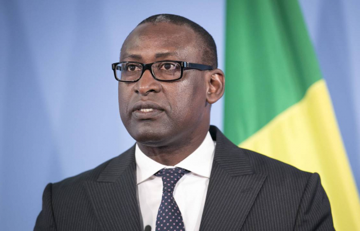 Mali's foreign minister pleads solidarity with the international community