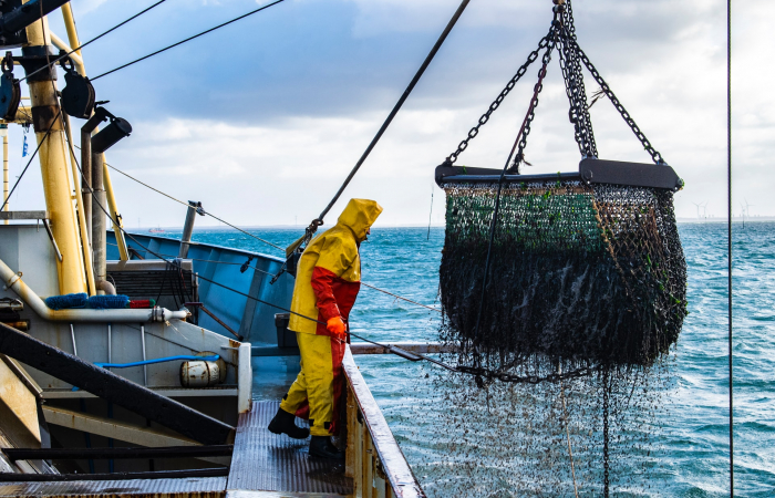 EU and UK agree on fishing quotas for 2021