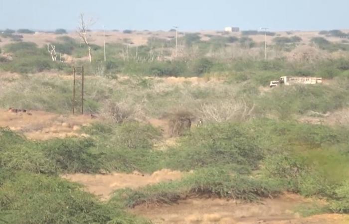 Skirmishes in Yemen's Hodeidah