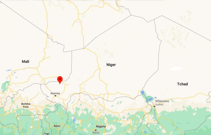 Dozens killed by Islamists in a village in western Niger