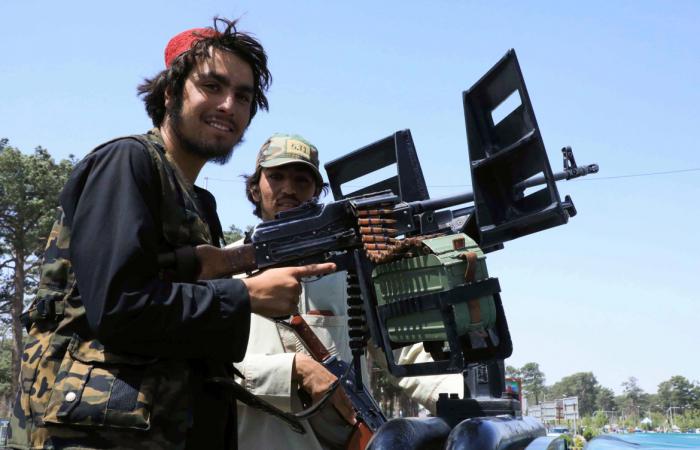The Taliban settle in