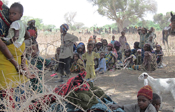 Amnesty International warns of increasing recruitment and killing of children by terrorist groups in Niger's tri-border area